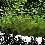 Przyroda 44